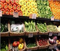 «الزراعة» تعلن فتح الأسواق اليابانية أمام المنتجات الزراعية المصرية