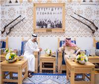 صور  الملك سلمان يستقبل الشيخ محمد بن زايد في قصر العوجا بالسعودية