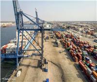 وصول 2385 رأس عجول حية لميناء سفاجا