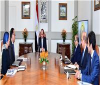 السيسي يجتمع برئيس الوزراء ووزير النقل لمتابعة «معلوماتية النيل»