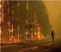 ارتفاع عدد قتلى حرائق غابات كاليفورنيا إلى 42 شخصا