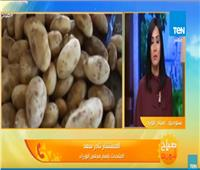 فيديو| مجلس الوزراء يكشف سبب أزمة البطاطس
