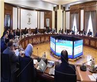 الحكومة توافق على إنشاء «اللجنة العليا الدائمة لحقوق الإنسان»