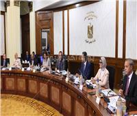 الحكومة توافق على إنشاء «جامعة سفنكس» بمحافظة أسيوط