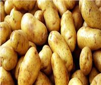 فيديو| الحكومة تزف بشرى للمواطنين بخصوص أزمة البطاطس