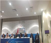 وزير البيئة: مصر قادرة على أن تكون نقطة التقاء للدول العربية والأفريقية