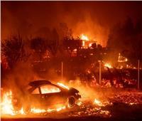 ارتفاع عدد ضحايا كاليفورنيا إلى 48 قتيلا