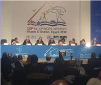 وزير المالية: القضايا البيئية لها الأولوية في رؤية مصر 2030