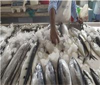أسعار الأسماك في سوق العبور اليوم ١٤ نوفمبر