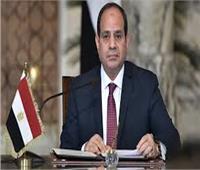 السيسي يوجه بسرعة إنجاز الأعمال الإنشائية بمدينة العلمين الجديدة