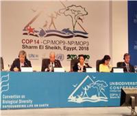 وزير الصناعة : وضع خطة استراتيجية للتعامل مع مستقبل التنوع البيولوجي