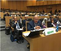 وزير الخارجية يشارك في الاجتماعات التمهيدية للقمة الأفريقية الاستثنائية