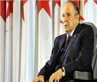 بوتفليقة يجدد دعم الجزائر الكامل للشعب الفلسطيني في مسيرته النضالية