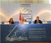 فؤاد تعقد مؤتمر صحفي للإعلان عن تفاصيل مشروعي برنامج الأمم المتحدة الإنمائي