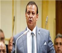 برلماني: مشاركة «شاروبيم» و«جمعة» في افتتاح المساجد طعنة لـ «الإرهابية»