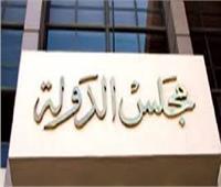 اليوم .. نظر طعن الحكومة لإلغاء بطلان التحفظ على أموال «سعودي ماركت»