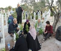ما حكم وضع الزرع عند القبر؟.. «البحوث الإسلامية» تجيب