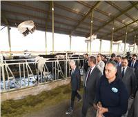 صور| نائب وزير الزراعة ومحافظ البحيرة يفتتحان مزرعة للإنتاج الحيواني