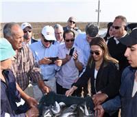 صور..رئيس وفد البنك الأسيوي يشيد بجودة مشروع الاستزراع السمكي