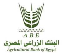 السيد القصير: 310 مليون جنيه حجم تعامل البنك الزراعي مع أرض الخير