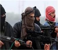 26 فبراير.. أولي جلسات نظر طعن المتهمين بـ«طلائع حسم» على إدراجهم بقوائم الارهاب