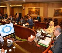 لجنة من مجلس الوزراء لمتابعة المشروعات الخدمية بالغربية