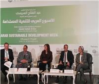 ياسمين فؤاد: الإدارة الرشيدة للموارد تحقق التنمية المستدامة