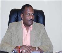 مساعد الرئيس السوداني يشارك في افتتاح معرض «عقارات مصر» بلندن