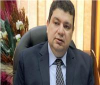 الوكيل: 20% نسبة المشاركة المصرية في المشروع النووي