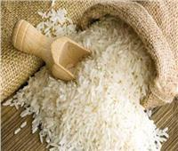 فيديو| التموين: طرح مناقصة عالمية لاستيراد الأرز