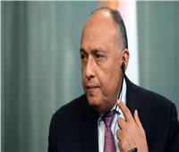 شكري أمام اجتماع دول جوار ليبيا: امتداد الأزمة يهدد المنطقة كلها بالانفجار