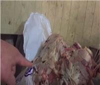 فيديو  «شرطة التموين» تواصل حملاتها لإحكام السيطرة على الأسواق
