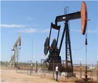 أسعار النفط تنخفض نحو 3 % بعد تأجيل أوبك لقرار بشأن الإنتاج