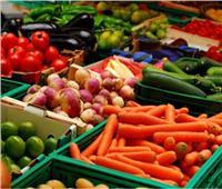 حصاد 2018| ارتفاع حجم الصادرات الزراعية وفتح أسواق جديدة بدول العالم