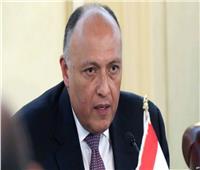 فيديو| نص كلمة وزير الخارجية في ختام منتدى «أفريقيا 2018»