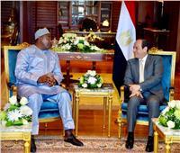 السيسي يستقبل رئيس جامبيا لبحث العلاقات الثنائية