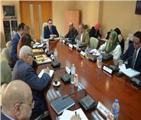 «القومي للسكان» يبدأ اجتماعات تقييم الاستراتيجية السكانية مع خبراء الأمم المتحدة