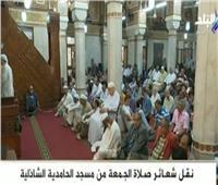 بث مباشر.. شعائر صلاة الجمعة من مسجد الحامدية الشاذلية