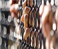 إحالة المتهم بقتل أب وابنه بالمنيا للمحاكمة الجنائية العاجلة