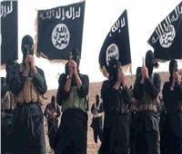 مرصد الإفتاء: 2018 يكشف تراجع نشاط التنظيم الإعلامي لداعش
