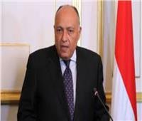 وزير الخارجية: النمسا تتفهم كافة أوضاعنا في مصر