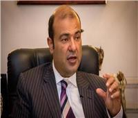 خالد حنفي يدعو لإنشاء تكتلات اقتصادية عربية كبيرة لتحفيز الاستثمار