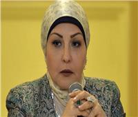 «أبو السعد»: وضعنا قانونًا للمشروعات الصغيرة والمتوسطة ولم يظهر للنور