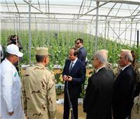 فيديو| الرئاسة تستعرض تفاصيل افتتاح السيسي لمشروع الصوب الزراعية