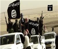 تنظيم «داعش» يعلن مسؤوليته عن هجوم في تلعفر بشمال العراق