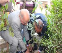 «نقيب المعلمين» يطلق مبادرة زراعة المليون شجرة مثمرة ببورسعيد