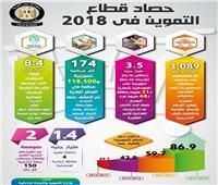 بالأرقام.. إنجازات وزارة التموين في ٢٠١٨