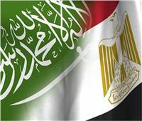 مصر والسعودية يبحثان إنشاء منطقة صناعية بنظام المطور الصناعي