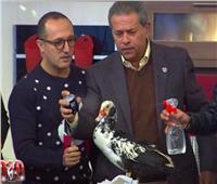 فيديو| توفيق عكاشة يكشف سر علاقته بـ«البط» على الهواء