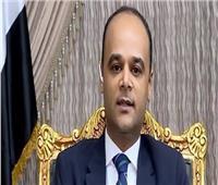 فيديو  «الحكومة»: 2019 عام تأسيس إنجازات مصر 2020